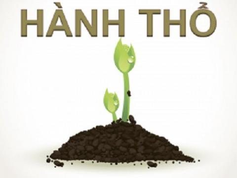 menh-tho-sinh-vao-nhung-nam-nao-hop-voi-mau-gi-nhat(1)